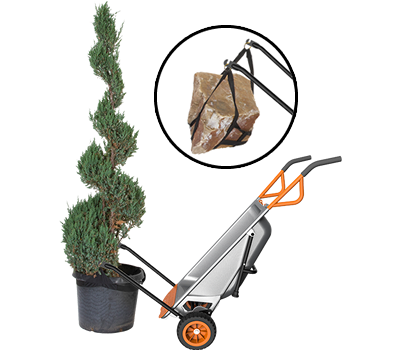 Worx Aerocart moving a large potted outdoor plant, and rock
